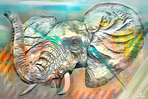Elephantom (©2014 Joe Latimer)